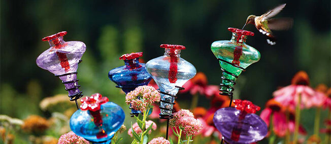 hummingbird-feeder-stakes-feature.jpg
