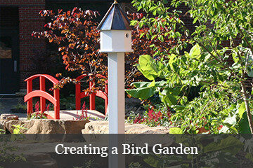 Use bird houses, baths and feeders plus beautiful flowers to create a backyard bird garden.