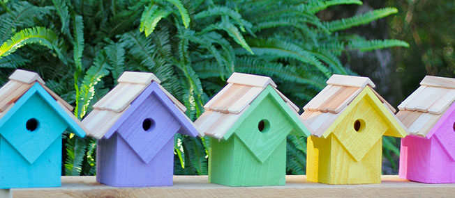 bird-house-designs-feature.jpg