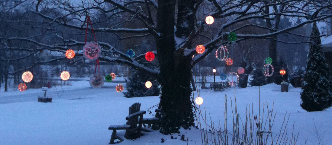 Hang Christmas light balls and starlight spheres from tree branches.
