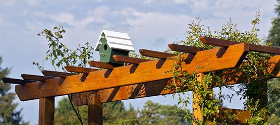 Bird House Sitting On an Arbor