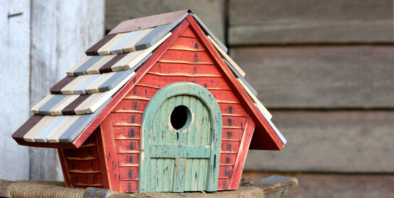 Bird House Buying Tips