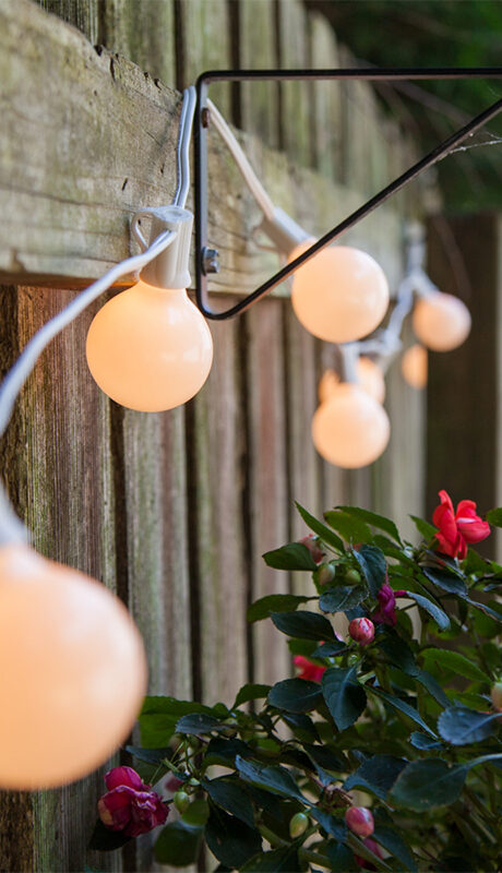 G40 Pearl White Globe Lights Brighten a Backyard Fence