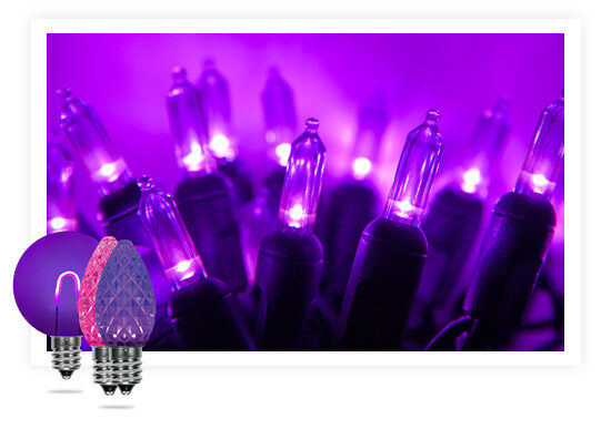 Purple & Pink Lights