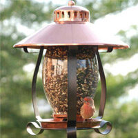 Coppertop Lantern Bird Feeder