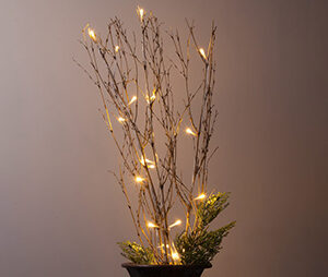 Lighted Branch with LED Lights