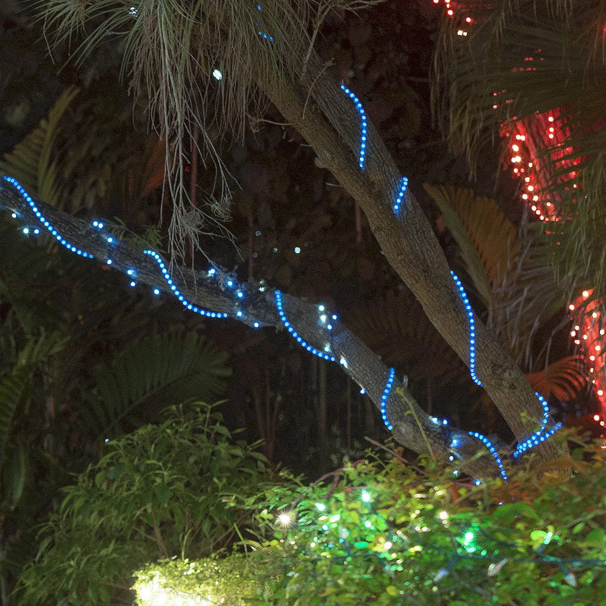 Rope Light Wraps Easily Around Trees & Posts