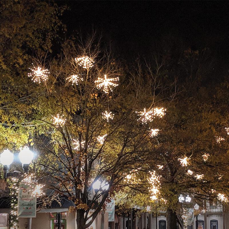 Starburst Tree Lights